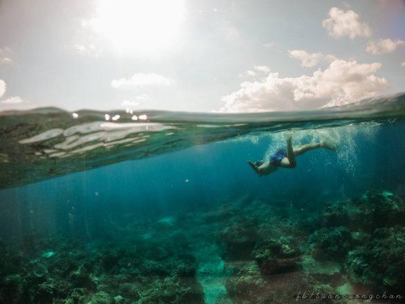 Du lịch Phú Quý, kinh nghiệm ăn chơi hết đảo Phú Quý